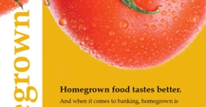 Adams Dairy Bank Homegrown Mailer