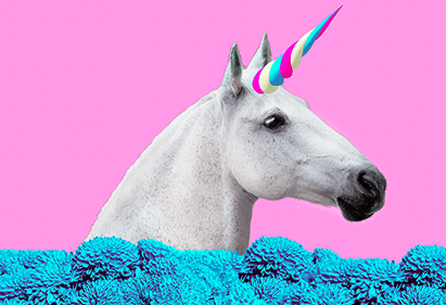 Unicorn Marketing Professional